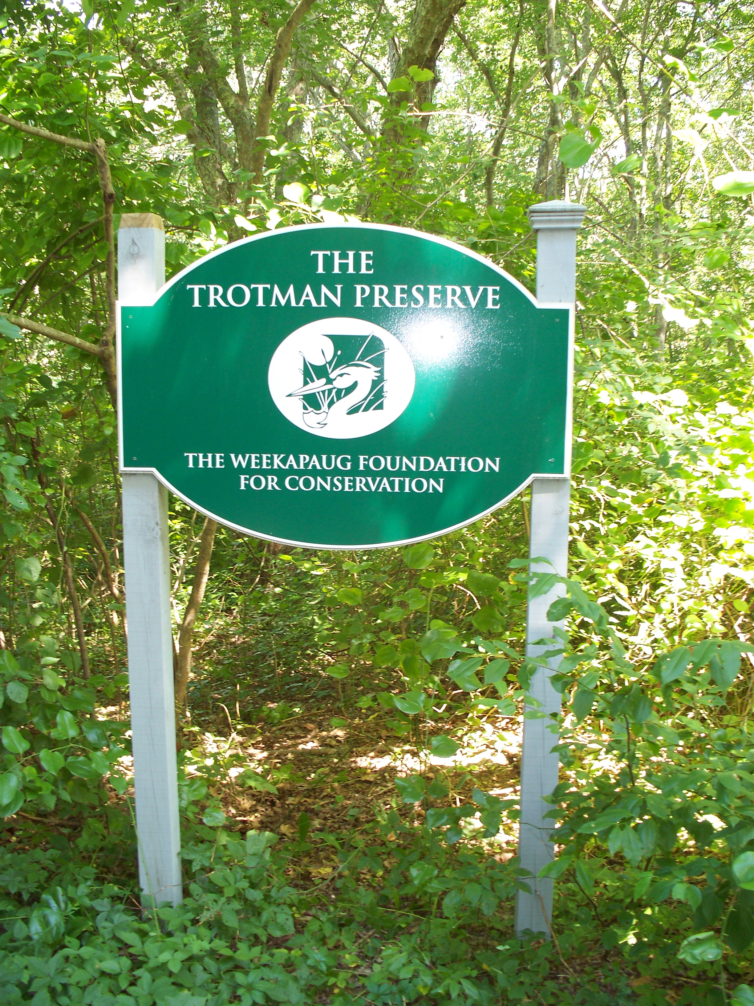 7A. The Trotman Preserve