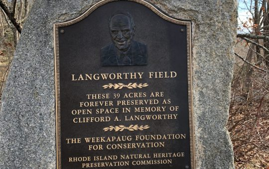 Lang Field Stone